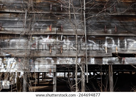 Ruined old tobacco barn with missing boards, overgrown by vines and trees, bearing letters and spots of white paint. The gap in the wall opens up to the dark space behind. Background. - stock photo