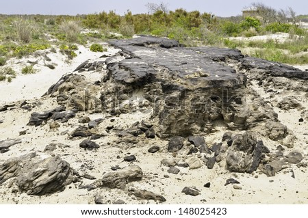 Ruins of Baltimore Boulevard, an island road of asphalt 15 miles long, built for housing development in the 1950s, destroyed by a storm in 1962, Assateague Island National Seashore, Maryland, USA - stock photo