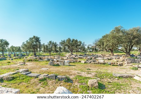 Ruins of Basilica at Umm Qais. Umm Qais is a town in northern Jordan near the site of the ancient town of Gadara. The Hellenistic-Roman town of Gadara was also sometimes called Antiochia. - stock photo