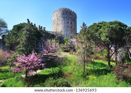 Rumelian Castle and judas trees in springtime in Istanbul - stock photo