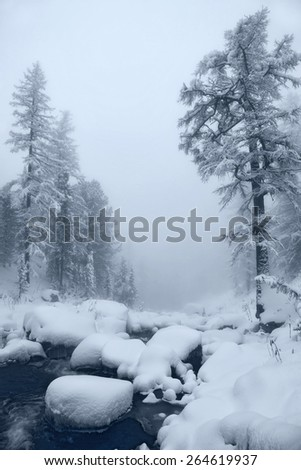 running creek and larches in the Altai Mountains - stock photo