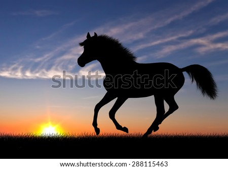 Running horse silhouette against beautiful sunset landscape - stock photo