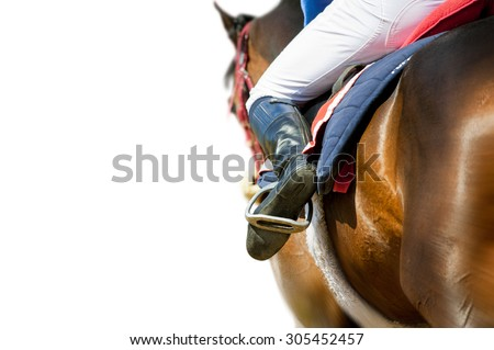 running racing thoroughbred horse coming first isolated on white detail - stock photo
