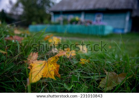 Rural autumn landscape. Solitude russian village with old wooden houses - stock photo