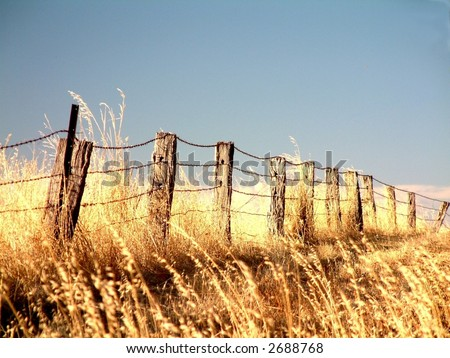 Rural farm boundary fencing in harsh drought stricken environment featuring rustic old posts in poor condition and long dead dry grass outback australia - stock photo