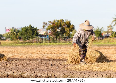 Rural farmer with haystack prepare for agriculture-11 - stock photo