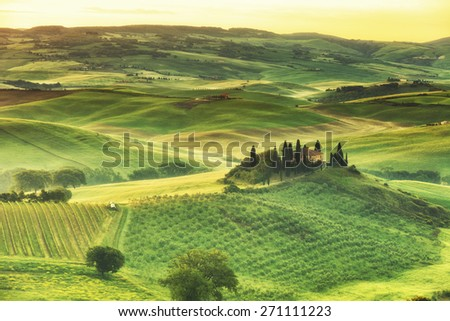 rural house on the hill among vineyards, Tuscany, Italy - stock photo