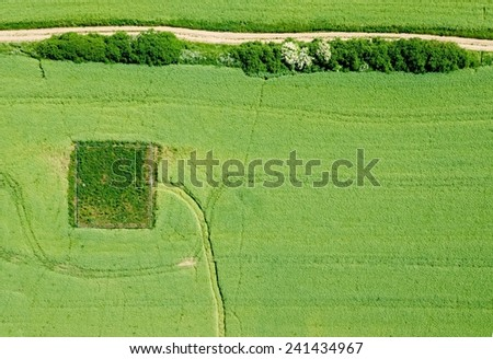 rural landscape background with plant fields  - stock photo