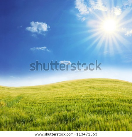 Rural landscape. Bright sun over the green field at summer. - stock photo