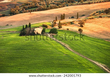 Rural landscape in the light of the sunset - stock photo