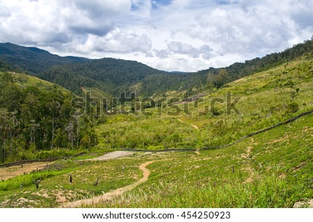 rural landscape in the mountains, New Guinea - stock photo