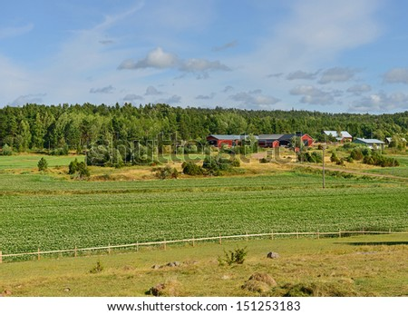 Rural landscape. Potato field and farm buildings - stock photo