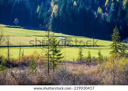 Rural landscape with a view across scrub to lush green farmland and evergreen forests in a scenic nature background. - stock photo