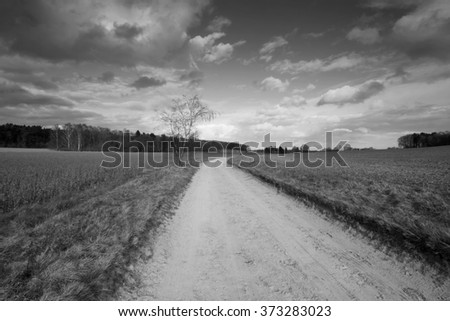 Rural landscape with clouds b&w - stock photo