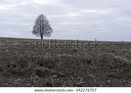 Rural landscape with signs of early frost, outdoor horizontal shot with focus in the foreground - stock photo
