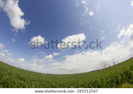 Rural landscape with white and grey clouds and wheat field. Fisheye lens effect - stock photo