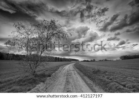 Rural sand path  - stock photo
