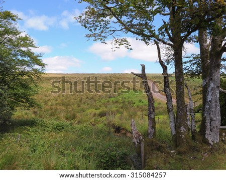 Rural Scene at Lower Willingford Bridge on Exmoor National Park in Somerset, England, UK - stock photo