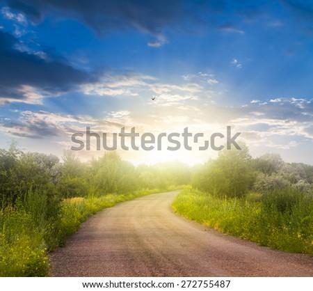 rural scene at the sunset - stock photo