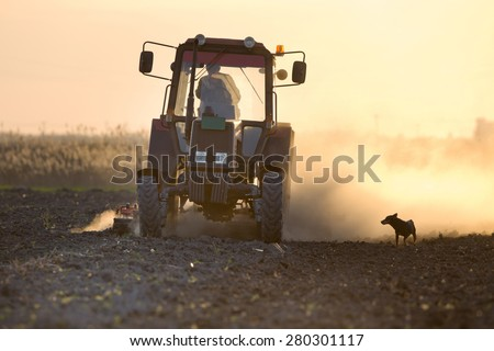 Rural scene of tractor plowing field in sunset while dog is making his company - stock photo