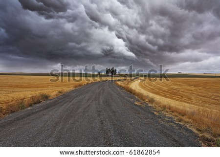 Rural soil road to fields after harvesting. Montana, the USA - stock photo