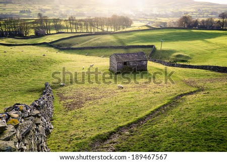Rural view with meadows, sheep, dry stone walls and a traditional stone barn near Hawes in Wensleydale, England. - stock photo