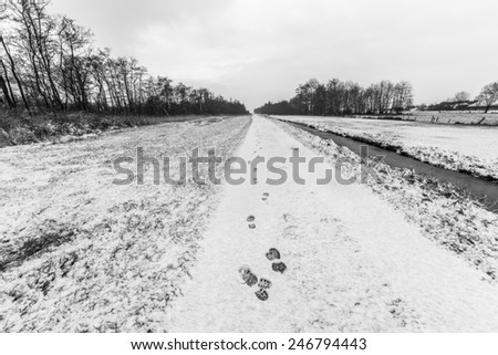 Rural winter landscape with a fresh layer of snow - stock photo
