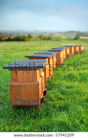 rural wooden beehives on meadow - stock photo