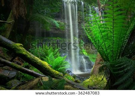 russell falls in Mt field national park tasmania - stock photo