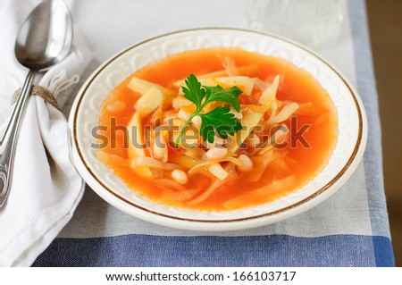 Russian Cabbage Soup with Potato and Haricot Beans, Shchi (Stchi) - stock photo