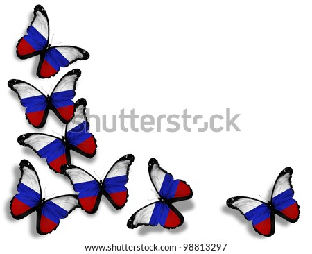 Russian flag butterflies, isolated on white background - stock photo