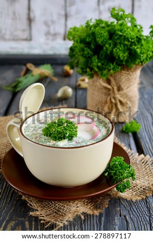 Russian spring-summer cold soup with vegetables with kefir - stock photo