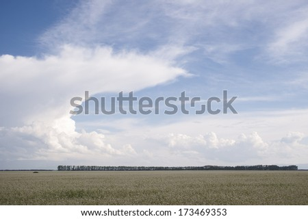 Russian Steppes - stock photo