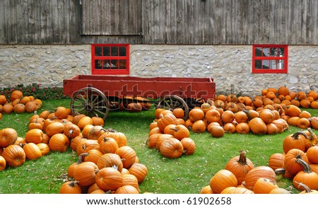 Rustic autumn scene with pumpkins cart and barn - stock photo