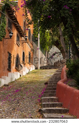 rustic street details in San Miguel de Allende, Mexico - stock photo