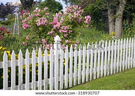 Rustic white picket fence with roses and other flowers in the background. - stock photo