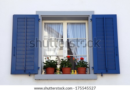 rustic window with blue shutters and flower pots in white rural house, Switzerland. - stock photo