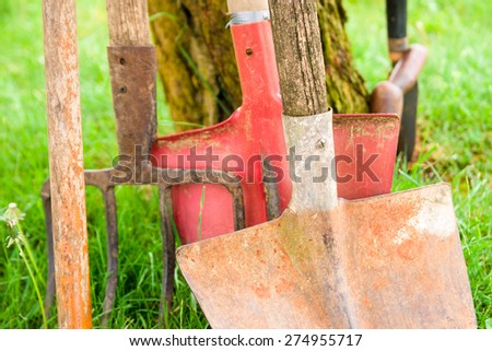 rusty and functional vegetable gardening tools - stock photo
