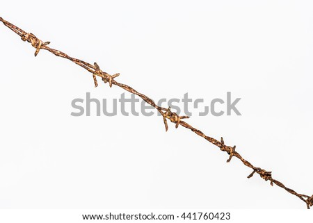 rusty barbed wire isolated on white background - stock photo
