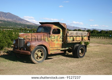 Rusty dump truck parked on a commercial Christmas tree farm open for business - stock photo
