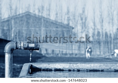 Rusty ShuiGuanZi out of water  - stock photo