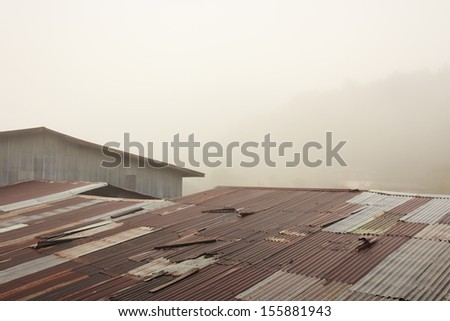 Rusty Tin Roof with Fog. - stock photo