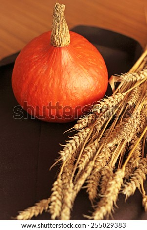 rye and pumpkin, thanksgiving card - stock photo