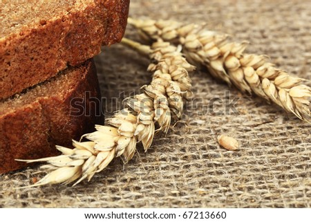 Rye bread on a white background with a spike - stock photo