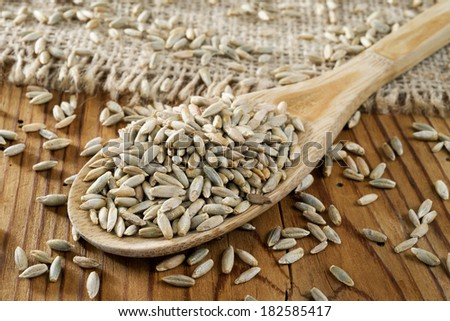 rye grains in wooden spoon - stock photo