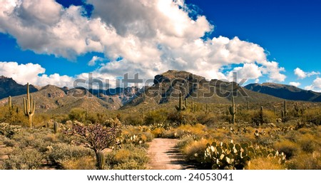 Sabino CanyonCatalina National Monument Tucson, Arizona - stock photo