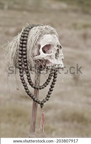 sacrifice - stock photo