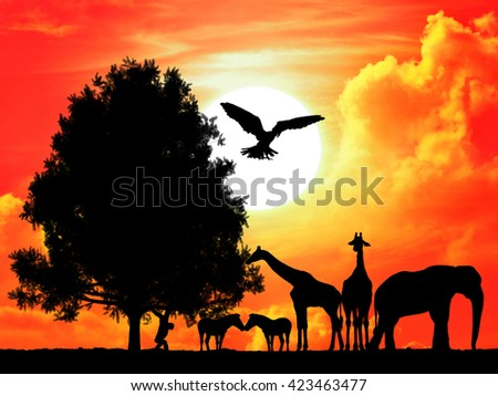 Safari in Africa. Silhouette of wild animals with sunset background - stock photo