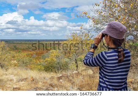 Safari in South Africa, woman tourist with binoculars looking at savannah  - stock photo
