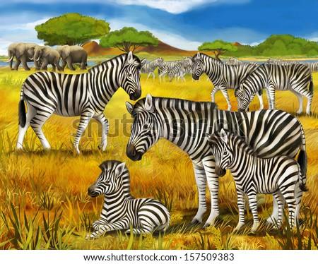 Safari - zebras - illustration for the children - stock photo